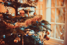 Festive Feasting at The Bedford Hotel. Enjoy a delicious festive lunch or dinner in the beautiful setting of The Bedford Hotel in the heart of Tavistock.
